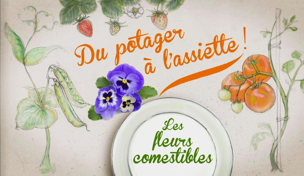 """""""Du potager à l'assiette"""" avec Jardiland"""